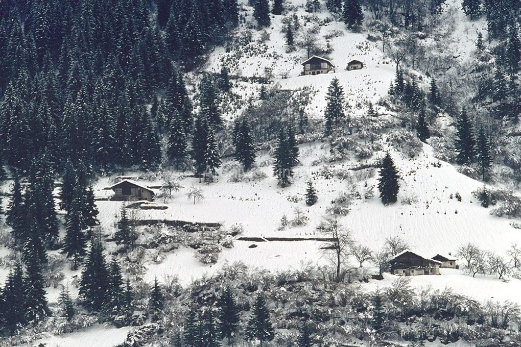 Archivio-Simion-Montagna-15