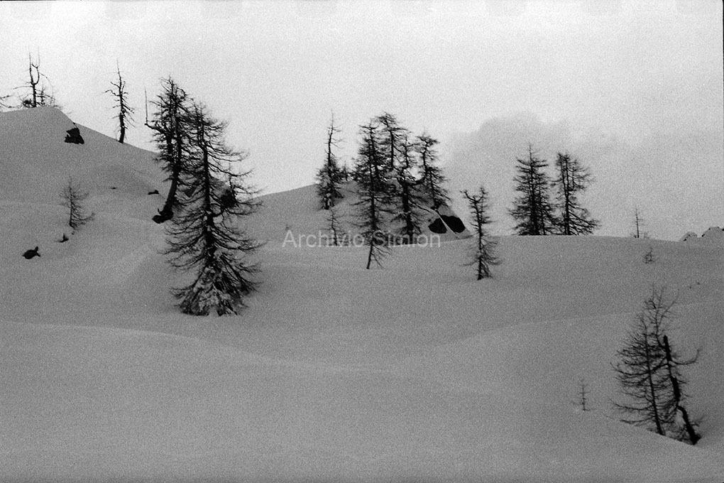 Archivio-Simion-Paesaggio-BN-13
