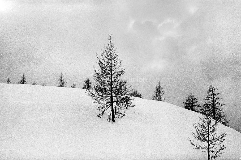Archivio-Simion-Paesaggio-BN-16