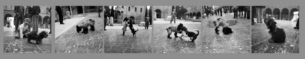 Pollution-Piazza-Santo-Stefano-Bologna-1972-02