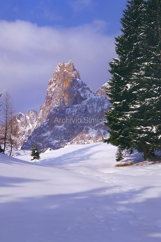 Archivio-Simion-vette-13