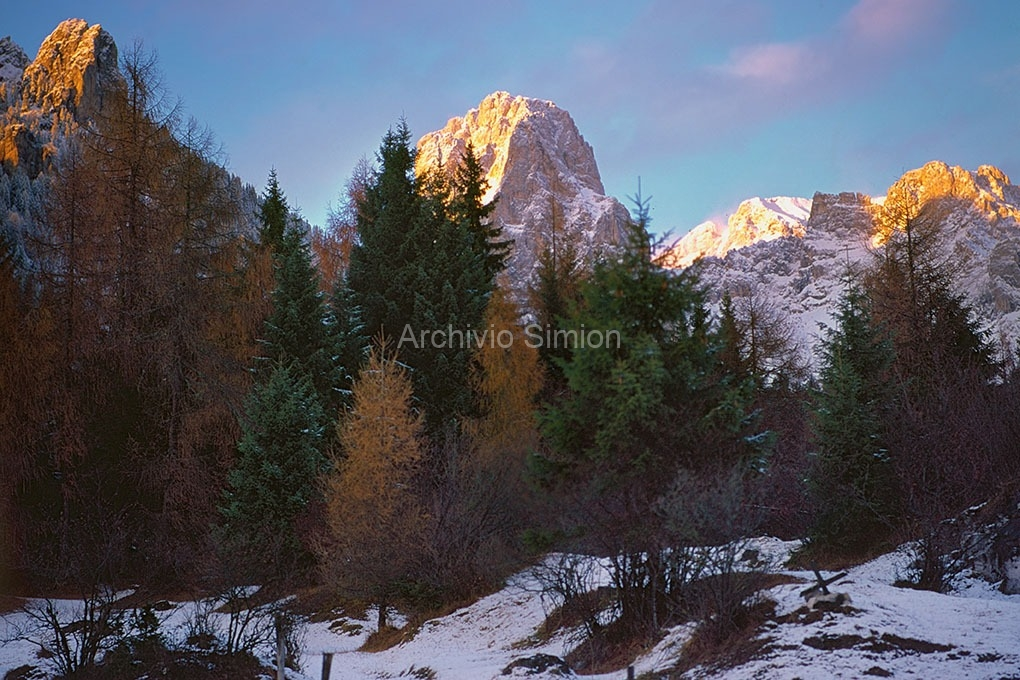 Archivio-Simion-vette-19