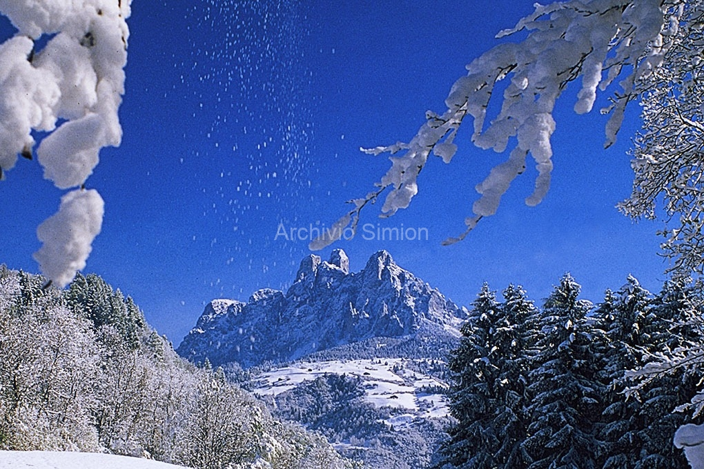 Archivio-Simion-vette-30